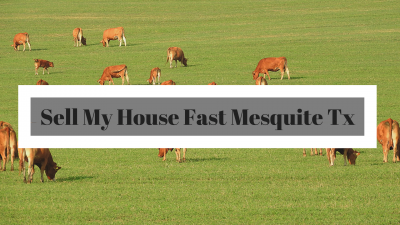 Sell My House Fast Mesquite Tx